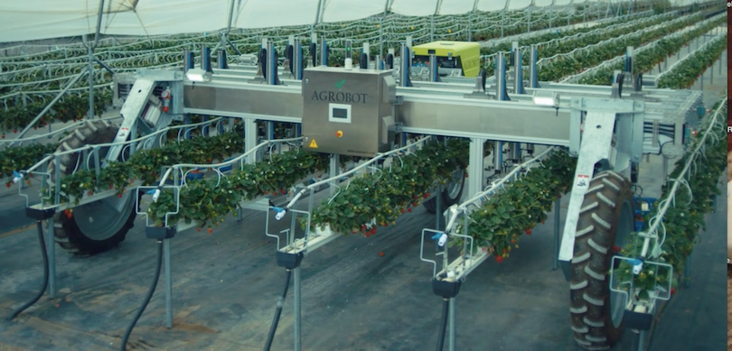 Robot Agrobot