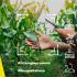 Agricoltura 4.0, il futuro è già qui