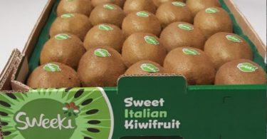 kiwi-sweeki
