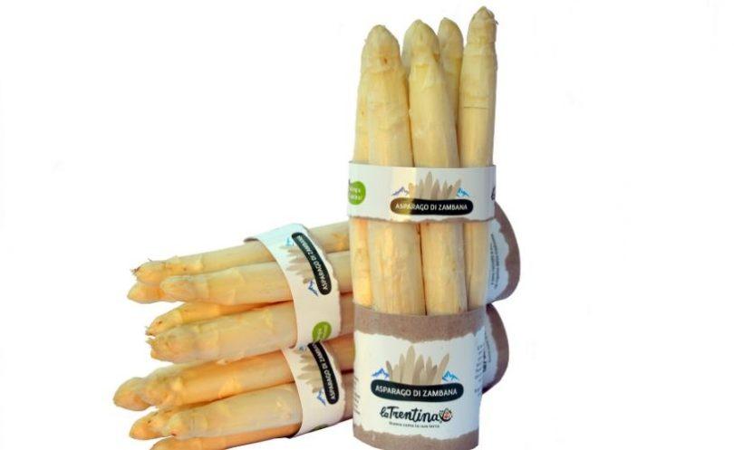 asparagi-zambana