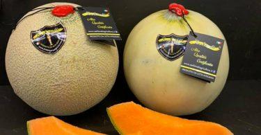 Melone Zerbinati