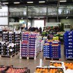 Dai mercati: crollo fragole, giù le zucchine e su le arance