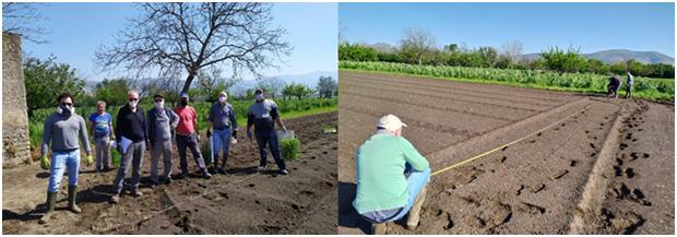 Allestimento campo sperimentale OP APOPA – Campania (24/4/2020)