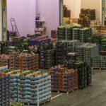 Dai mercati: anno no per il pomodoro, frutta estiva ai titoli di coda