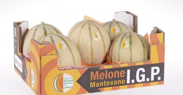 Melone_Mantovano_IGP