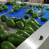 Avocado: le soluzioni tecnologiche per misurare la qualità