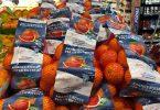 arance per la ricerca