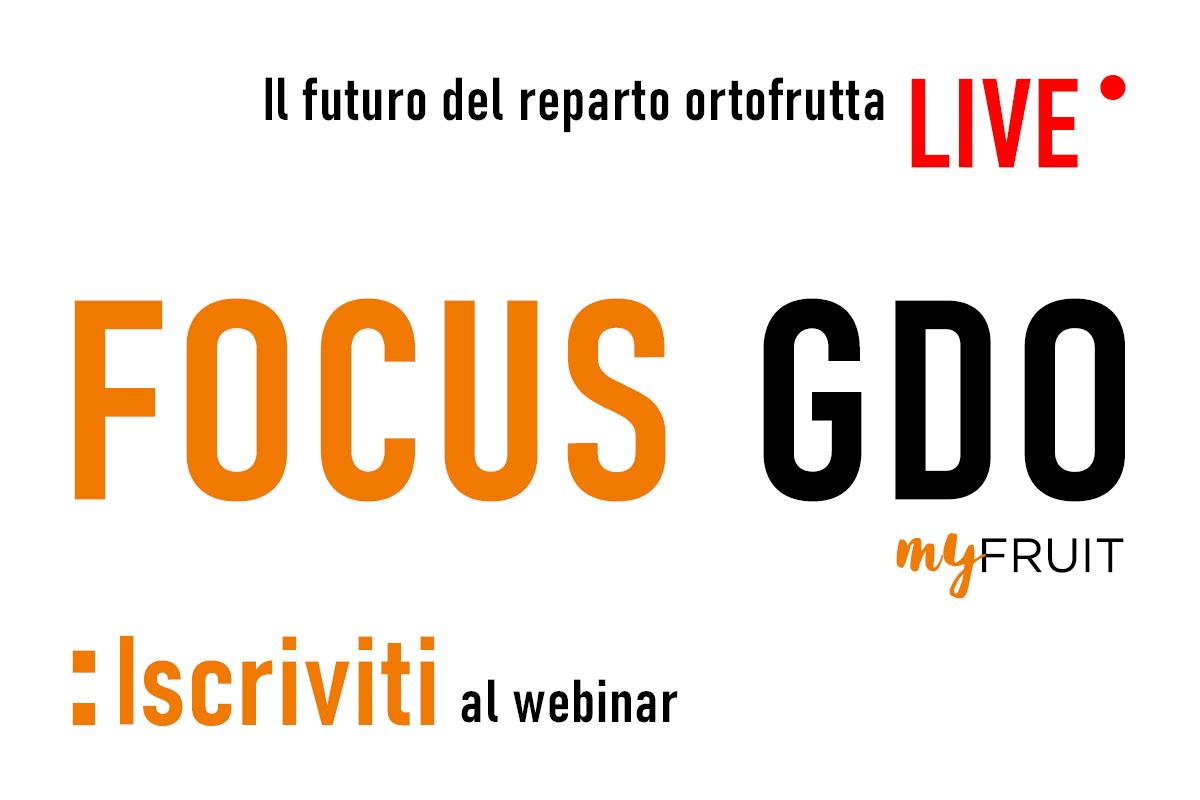 Focus GDO live