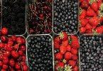 Italian Berry Day