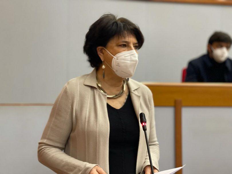 Silvia Zamboni, Capogruppo di Europa Verde