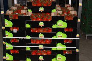 pomodori Vittoria