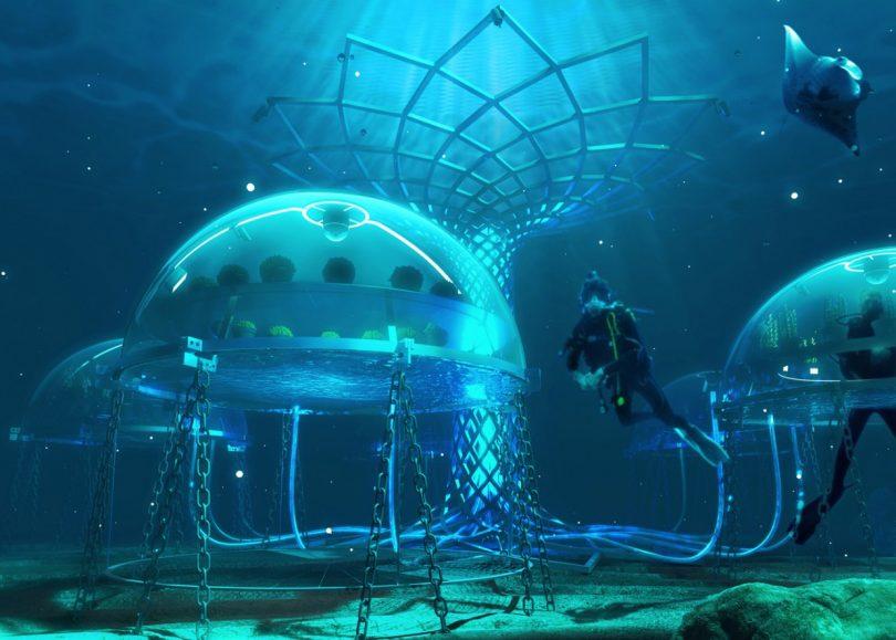serra sottomarina