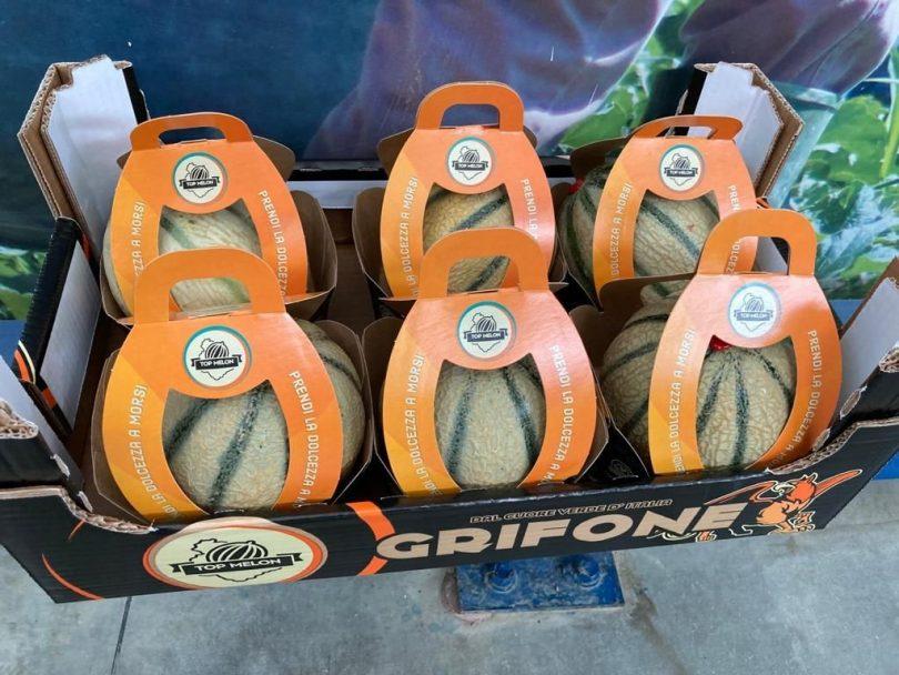 seminis melone